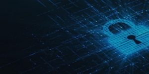 How to Survive the Encrypted Network Traffic Apocalypse